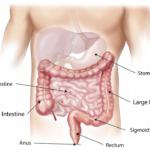 Nervöser Magen – Was tun?
